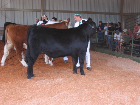 fair-2009-025