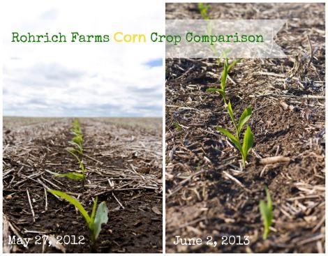 Crop Comparison
