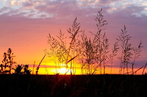ND Sunset No Watermark-3