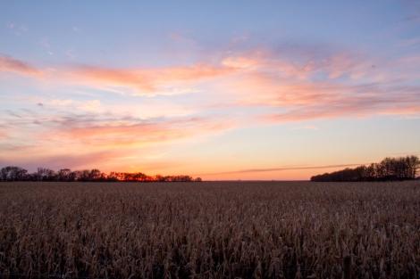 North Dakota Sunset Fall -16