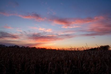 North Dakota Sunset Fall -19